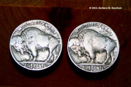 the-buffalo-side-of-double-nickels.jpg